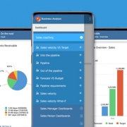 Business Intelligence on mobile device